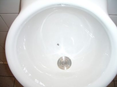 Flies in Urinals: The Value of Design Disruptions